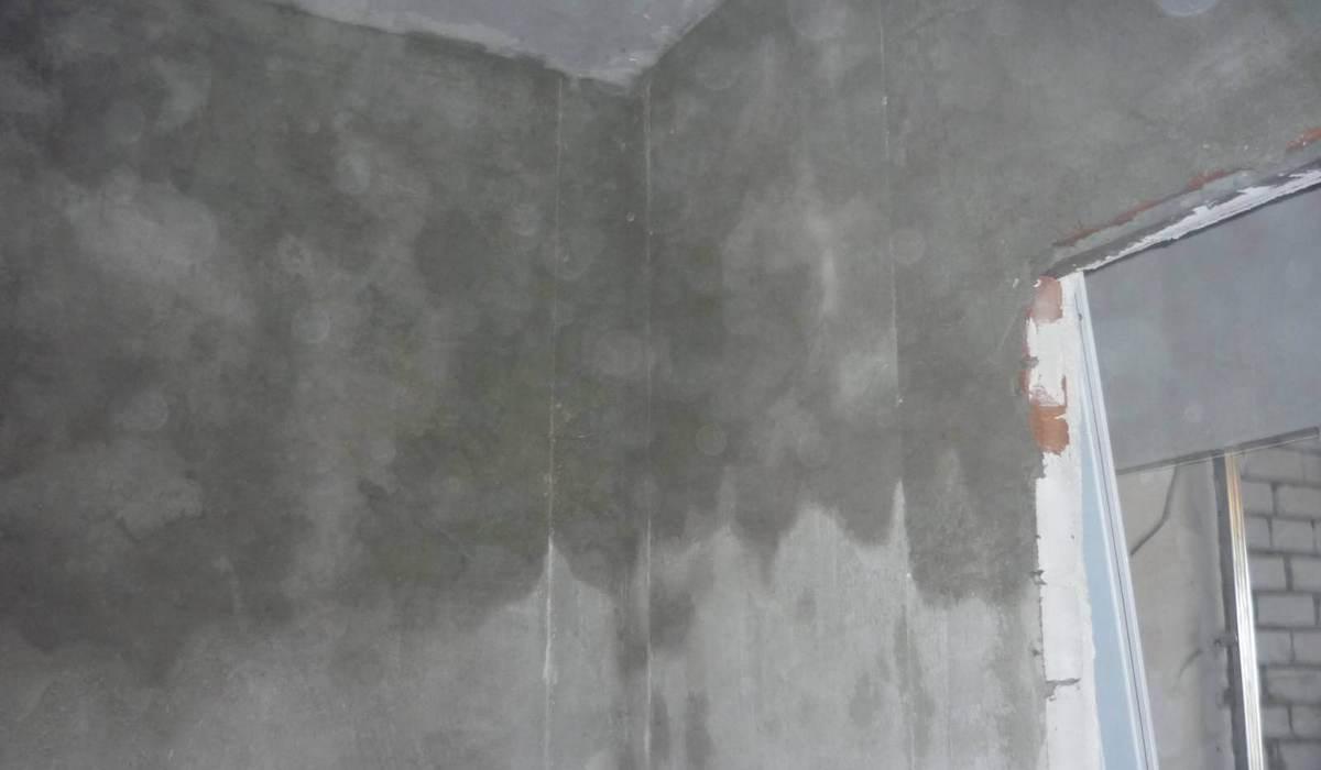 высыхание цементной штукатурки
