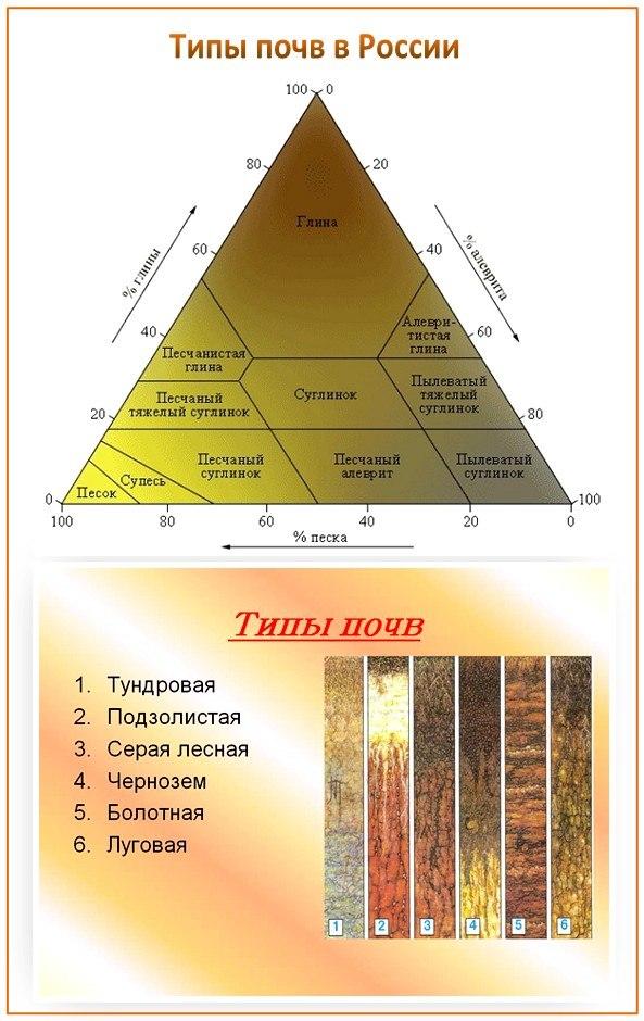 Типы почв