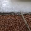 Идеально ровная бетонная стяжка пола (видео)